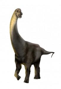 Lourinhasaurus | Carlos de Miguel