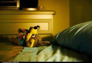 Emociones para combatir la exclusión social | Moyan Brenn