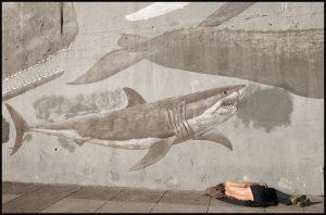 Las metáforas requieren alcanzar una interpretación figurativa | Colectivo Mamífero Versus