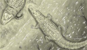 Lohuecosuchus_izda_y_Agaresuchus_dcha_by-Carlos-de-Miguel